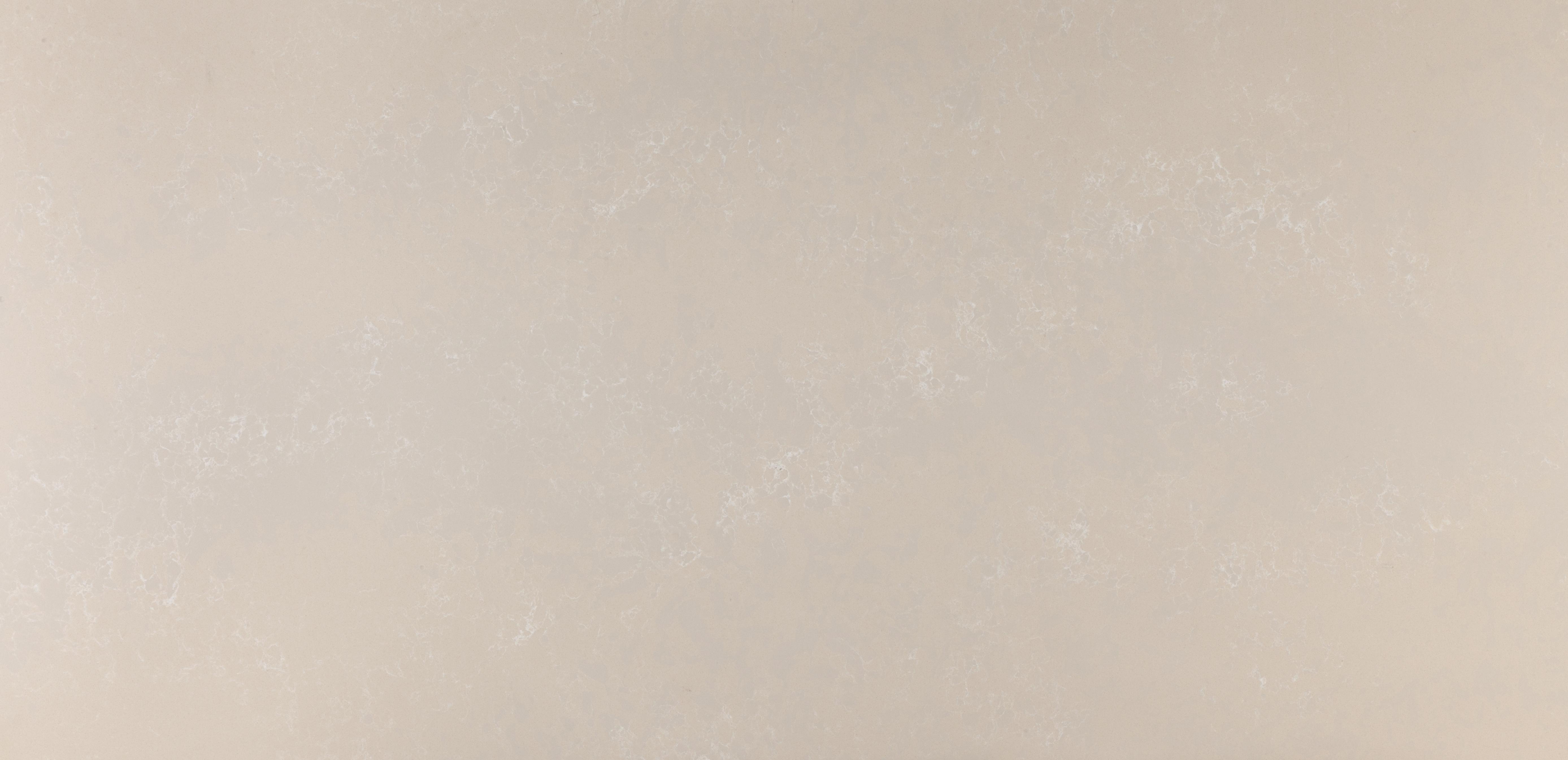 Cosentino suisse silestone retourne en premi re ligne - Association couleur gris et beige ...